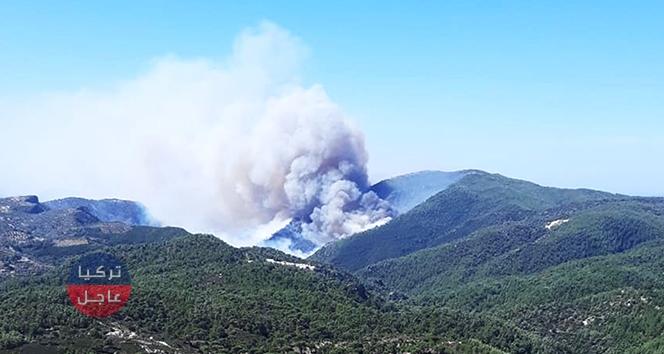 حريق كبير في إحدى غابات ولاية موغلا جنوب غرب تركيا والسلطات تتدخل بمروحيات